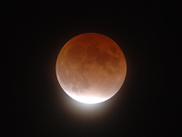 Image of February 20, 2008 Lunar Eclipse.