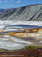 Click to see an image of Mammoth Hot Springs Main Terrace.